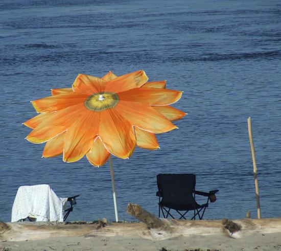 Beach Umbrella at Popham Beach%2C Maine