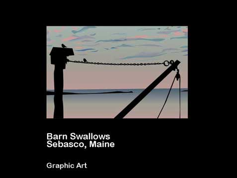 Maine Barn Swallows - Graphic Design - Andrea Brand