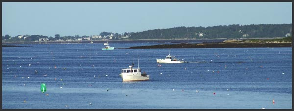 Maine Lobster Fishing Boats - Andrea Brand Photo